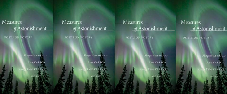 Measures of Astonishment Header